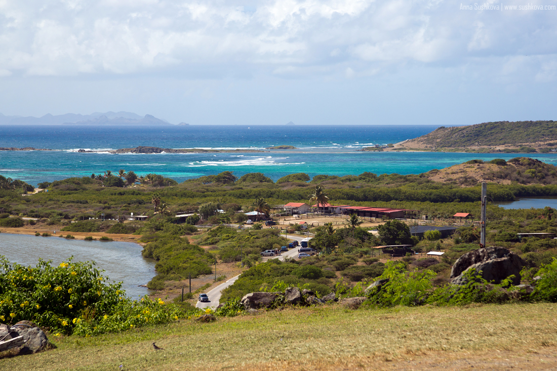 10nature-of-sint-maarten-p2.jpg