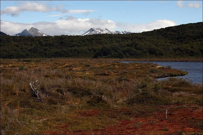 10views-of-tierra-del-fuego.jpg