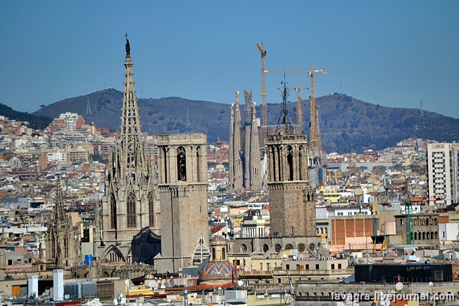 11beauty-of-barcelona-from-above.jpg