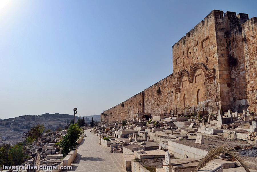 12looking-for-miracles-in-jerusalem.jpg