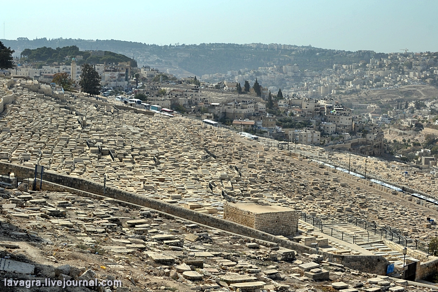 13looking-for-miracles-in-jerusalem.jpg