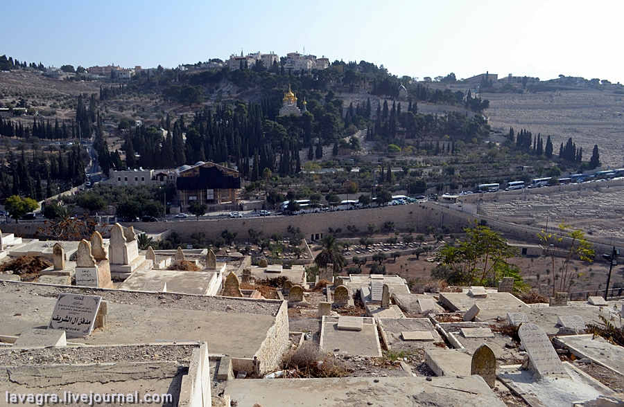 14looking-for-miracles-in-jerusalem.jpg