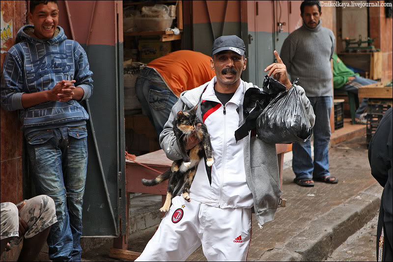 16morocco-walking-around-casablanca.jpg