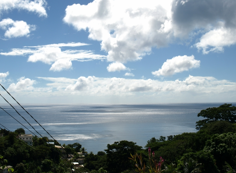 17dominica-dream-island.jpg