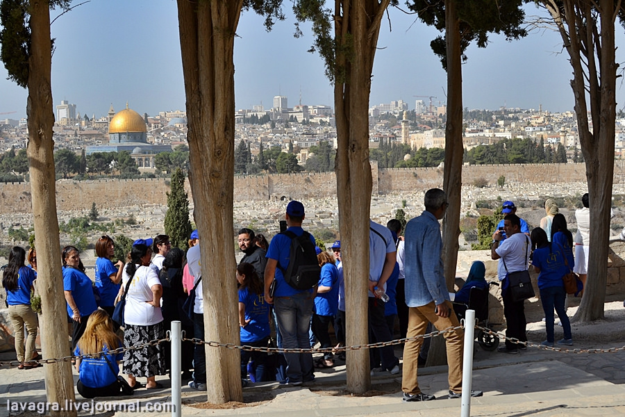 17looking-for-miracles-in-jerusalem.jpg