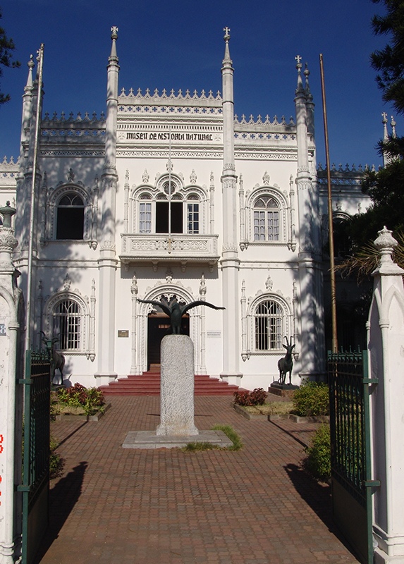 1natural-history-museum-in-maputo-city-mozambique.jpg