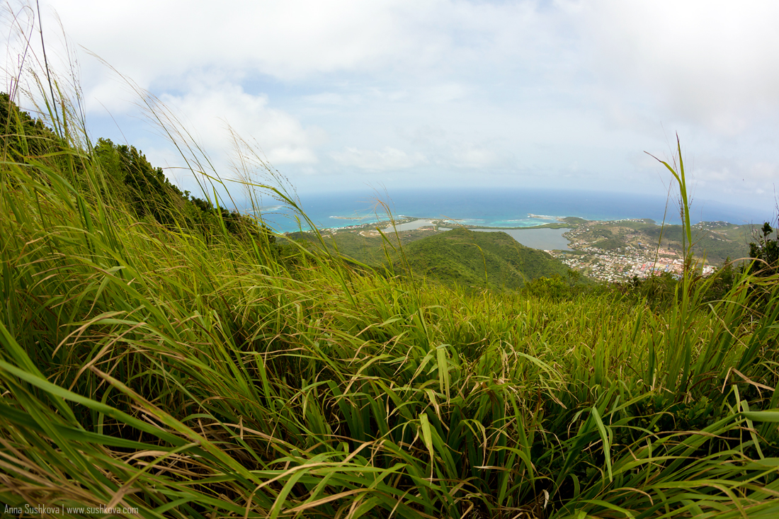 27nature-of-sint-maarten-p2.jpg