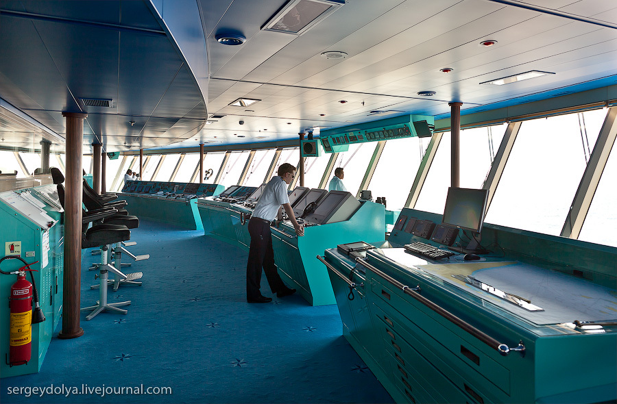 36how-a-cruise-liner-is-organized.jpg
