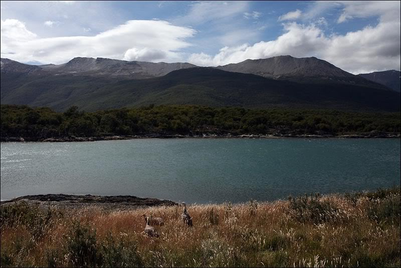 3views-of-tierra-del-fuego.jpg
