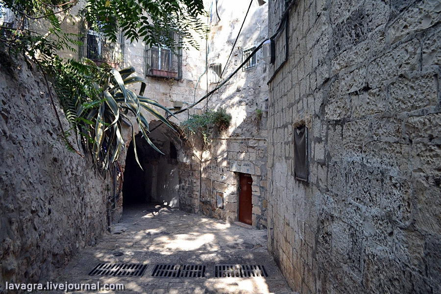 46looking-for-miracles-in-jerusalem.jpg