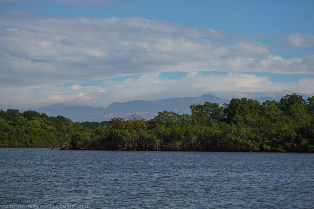 4costa-rica-mangroves.jpg