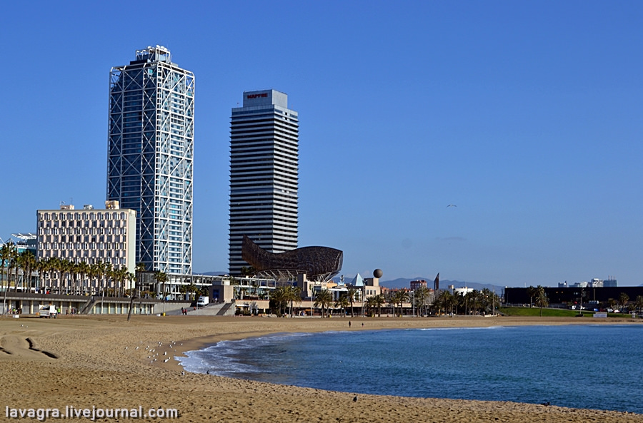 5barcelona-in-winter.jpg