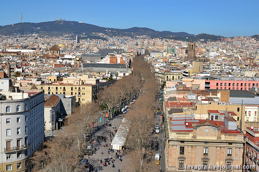 9beauty-of-barcelona-from-above.jpg