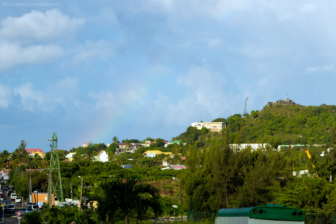 9nature-of-sint-maarten-p2.jpg