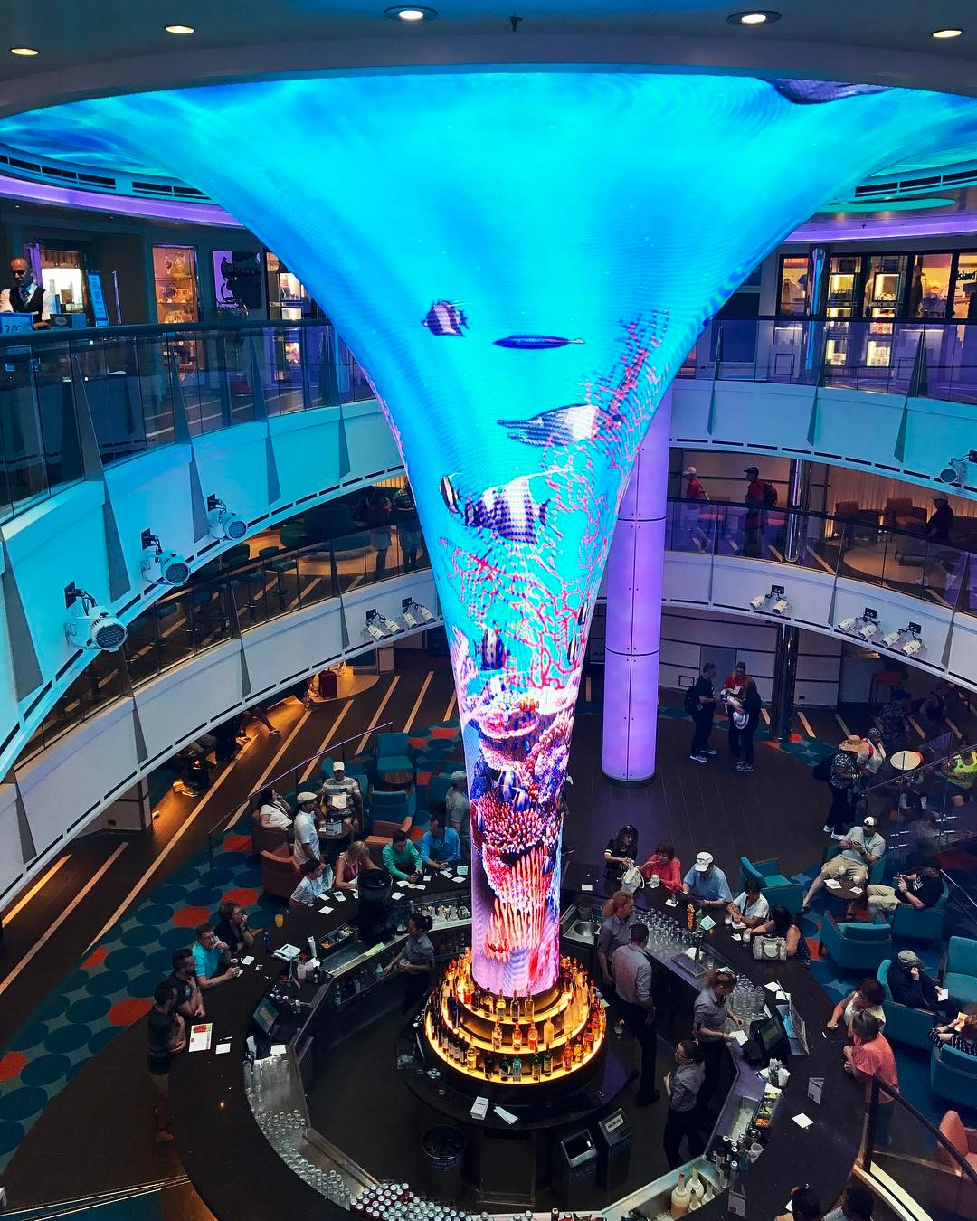 cruise ships pictures @captain_palme
