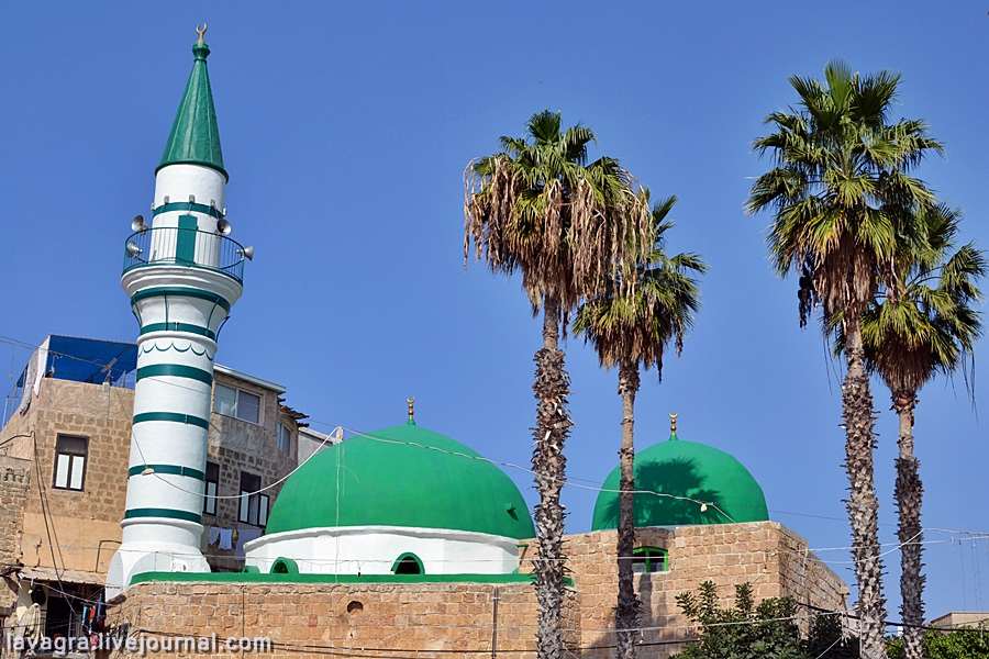 1fascinating-city-of-haifa-israel.jpg