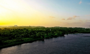Best things to do in Colon, Panama by CruiseBe