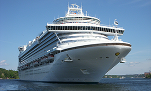 "© <a href=""https://commons.wikimedia.org/wiki/File:Emerald_Princess_Stockholm_2011a.jpg"" target=""_blank"" rel=""nofollow"">Holger.Ellgaard/Wikimedia</a>/<a href=""https://creativecommons.org/licenses/by-sa/3.0/deed.en"" target=""_blank"" rel=""nofollow"">CC BY-SA 3.0</a>"