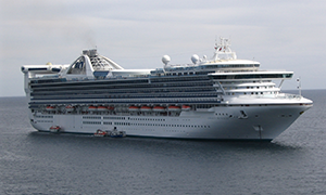 "© <a href=""https://commons.wikimedia.org/wiki/File:Golden_Princess_tendering_in_Cabo_San_Lucas.JPG"" target=""_blank"" rel=""nofollow"">Jean-Philippe Boulet/Wikimedia</a>/<a href=""https://creativecommons.org/licenses/by/3.0/deed.en"" target=""_blank"" rel=""nofollow"">CC BY 3.0</a>"