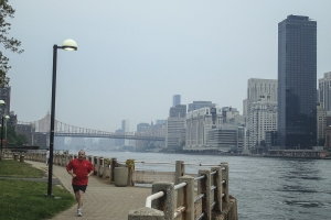Roosevelt Island in New York