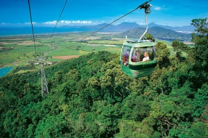 By Louise Marshall (Skyrail Rainforest Cableway), CC BY-SA 3.0, https://commons.wikimedia.org/w/index.php?curid=37374708