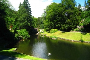 http://creativecommons.org/licenses/by/3.0 ||| Creative Commons Attribution 3.0