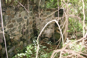 "© <a href=""https://commons.wikimedia.org/wiki/File:Fort_Purcell,_Tortola_(2).jpg"" target=""_blank"" rel=""nofollow"">Wikimedia</a>/Public domain"