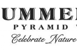 """//en.wikipedia.org/wiki/File:Summerhill_Pyramid_Winery_logo.png 
