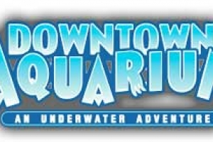 "//en.wikipedia.org/wiki/File:Downtown_aquarium_logo.png ||| <a href=""//en.wikipedia.org/wiki/Wikipedia:Non-free_use_rationale_guideline"" title=""Wikipedia:Non-free use rationale guideline"">Fair use</a> of copyrighted material in the context of <a href=""//en.wikipedia.org/wiki/Downtown_Aquarium,_Houston"" title=""Downtown Aquarium, Houston"">Downtown Aquarium, Houston</a>"